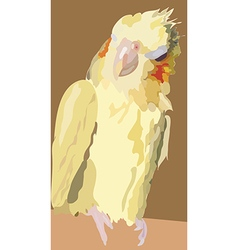 i2 parrot vector image