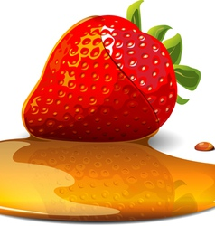 strawberry under caramel vector image vector image
