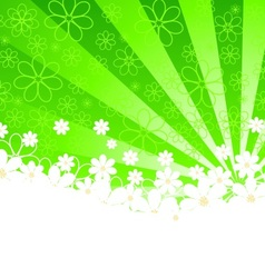 green background with daisies and sunshine vector image vector image
