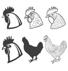 Set of chicken heads icons isolated on white vector