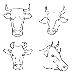 Hand Drawn Cow Heads vector image