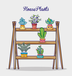 natural plants house in wooden shelf vector image