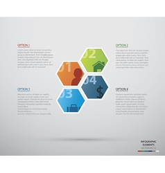 Hexagon infographic vector image