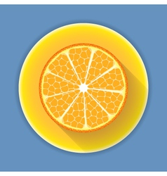 Citrus fruit orange icon vector