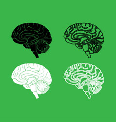brain icon black and white color set vector image