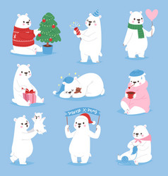 christmas white bear animal cute beauty vector image