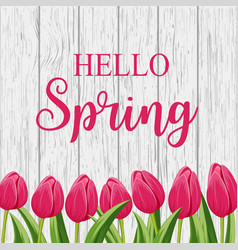 Hello spring banner with pink blooming tulip vector