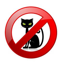 No cats allowed permission sign vector image