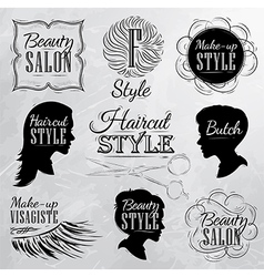 Beauty salon coal vector image vector image