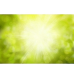 Sunny Green nature background selective vector image