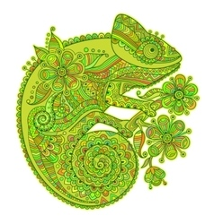 With a chameleon and beautiful vector