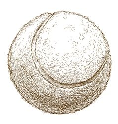Engraving tennis ball vector