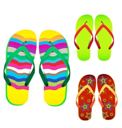 colorful flip flop vector image