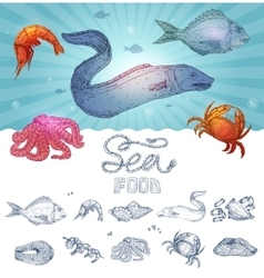 Seafood hand drawn concept vector