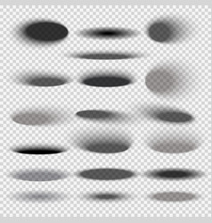 Transparent oval bottom drop shadows for any round vector