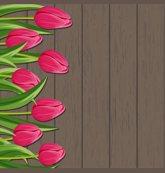 Spring banner with pink blooming tulip vector