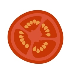 Tomato slice isolated vector image