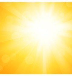 yellow sun background vector image vector image