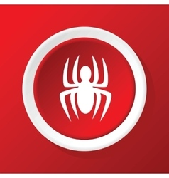 Spider icon on red vector