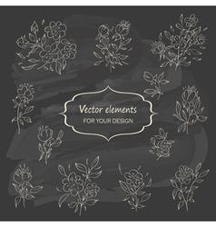 Hand sketched vintage floral elements vector