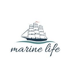 marine life with frigate vector image