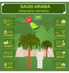 Saudi arabia infographics statistical data sights vector