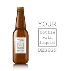 Template of glass beer bottles vector