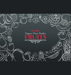 hand drawn fruits for farmers market vector image vector image