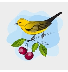 Hand drawn yellow bird on a branch vector