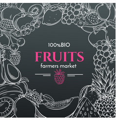 Hand drawn fruits for farmers market menu vector