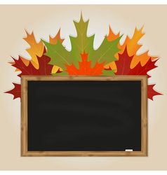 Maple leaves and black chalkboard vector