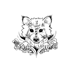 Abstract graphic raccoon print vector