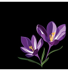 Background for design with spring flowers vector image