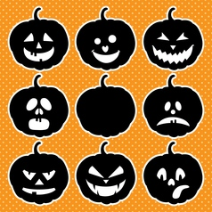 Blackpumpkins vector
