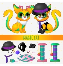 Yellow magic cat with accessories and toys vector