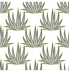 Agave succulent desert seamless pattern vector image vector image