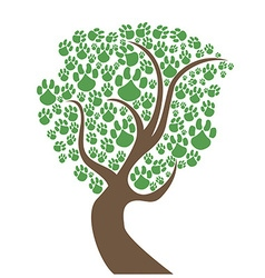 pet paws tree vector image vector image
