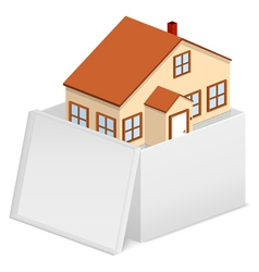 house in cardboard box vector image vector image