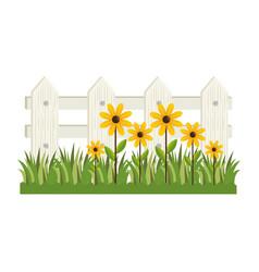 Plant flower garden vector