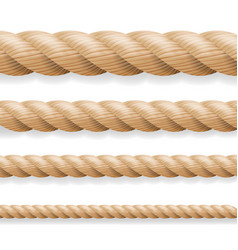 realistic rope different thickness rope vector image vector image