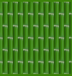 seamless background of bamboo stalks vector image