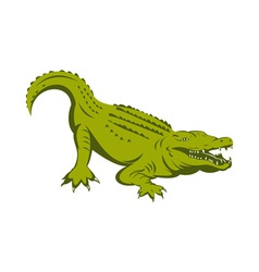 alligator head vector image
