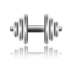 Metal sports dumbbell with reflection vector image vector image