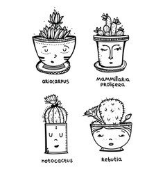 set of four cute cactus in pot with vector image