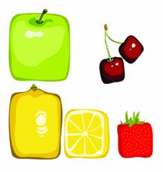 square fruit vector image