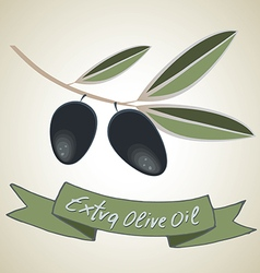 Extra olive oil vector