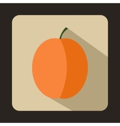 Fresh apricot icon flat style vector