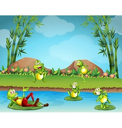 Five frogs living by the pond vector