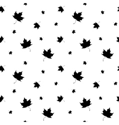 Black and white leaf maple seamless pattern vector image vector image