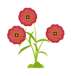 Buttercup flower bloom spring vector